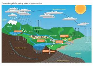 File Diagram Of The Water Cycle Including Some Human Activity Pdf