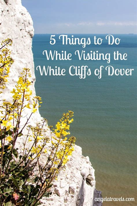 Pin image for 5 Things to Do While Visiting the White ...
