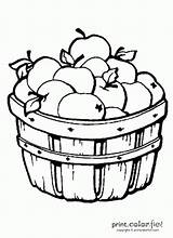 Barrel Apples Coloring Might Pages sketch template