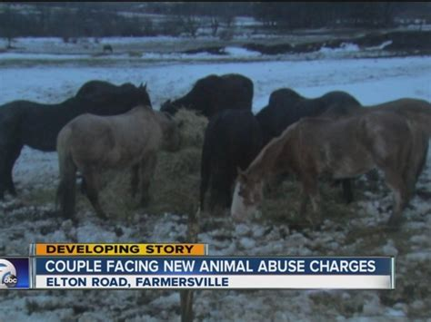 farm owner speaks   animal abuse charge
