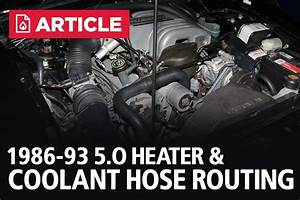 Heater Hose And Coolant Hose Routing  1986-1993