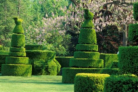 Incredible Topiaries Hgtv