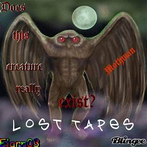 Does This Creature Really Exist? - LOST TAPES - Elarn03 ...