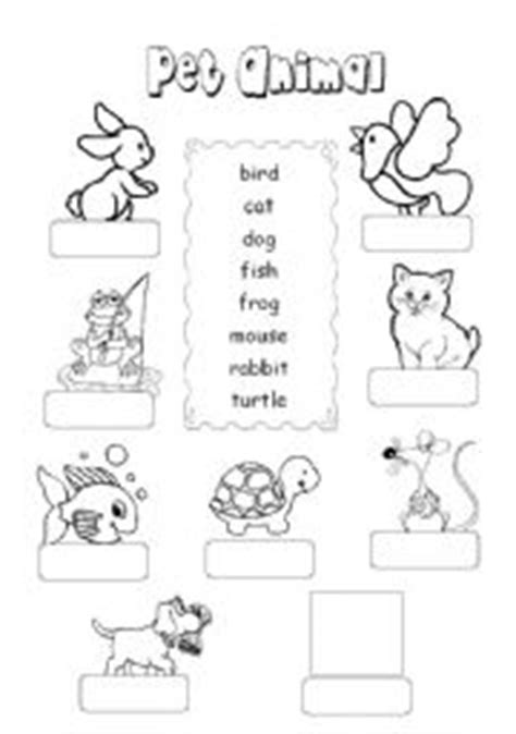 pet animal esl worksheet  tthappy