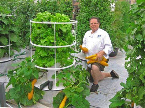 Six Systems For Self-sufficient
