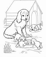 Coloring Pages Dog Printable Colouring Dogs Puppies Sheets sketch template