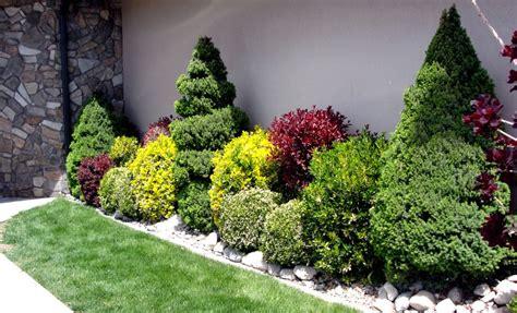Three Favorite Shrubs Side Yard Landscaping Landscaping
