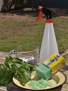 Garden pesticides global garden pesticides market 2017 for Garden pesticides