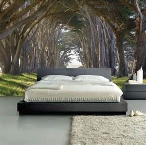 Headboard Designs South Africa by Wall Mural Sunrise In A Forest Wall Paper Self Adhesive