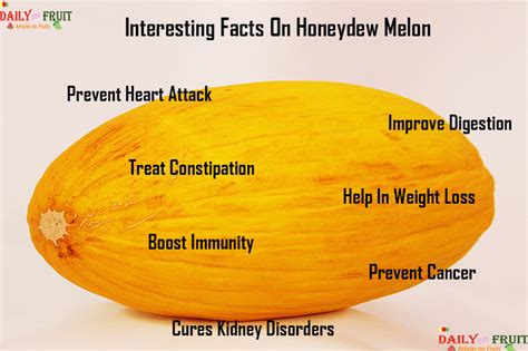 Nutrition Chart For Honeydew Melon