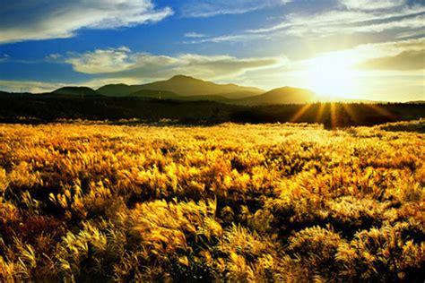 beautiful jeju island  south korea korean hawaii