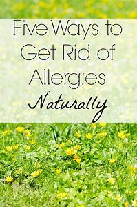 5 Ways to Get Rid of Seasonal Allergies Naturally - Life Made Full  Allergy Rid