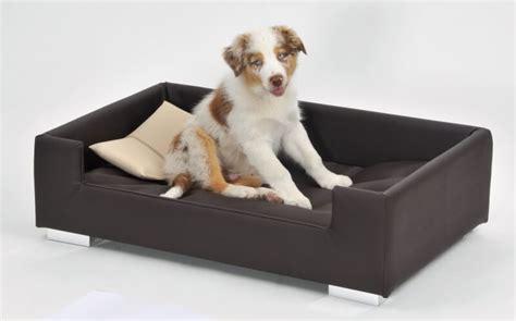 canape pour chien canapé pour chien brun beige panier et corbeille
