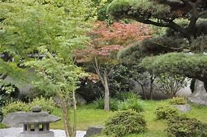 Japanischer Garten Pflanzen : japanischer garten in bielefeld impressionen garden blog ~ Markanthonyermac.com Haus und Dekorationen