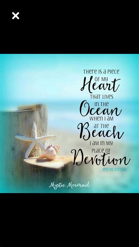 sea shell quotes images  pinterest beach