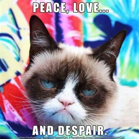 Grumpy Cat Love Meme - hippie grumpy grumpy cat pinterest cats love and peace