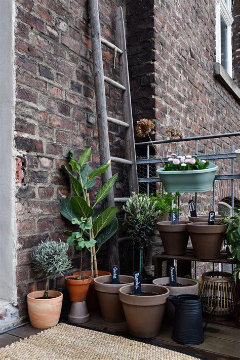 Balkon Gemüse Pflanzen by Projekt Farming Gem 252 Se Vom Balkon Mit Deine Ernte