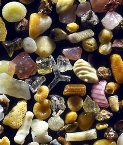 Microscopic Sand Photography Reveals the Breathtaking ...
