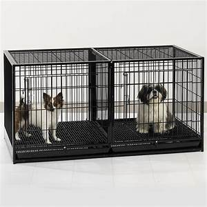 Delighted walmart wire dog kennel contemporary for Indoor dog kennels walmart