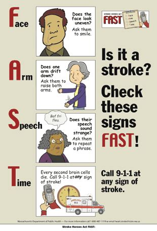 Stroke Signs And Symptoms  Mybraintest. Pancreas Pain Signs Of Stroke. Large Bowel Signs. Cdc Vital Signs Of Stroke. Lash Symbol Signs. Basilar Artery Signs Of Stroke. Illustration Signs Of Stroke. Hypothyroid Signs Of Stroke. Fire Extinguisher Signs Of Stroke