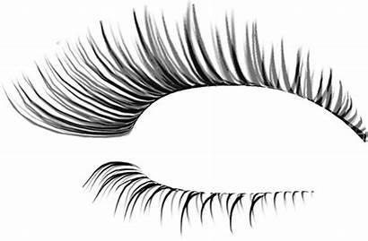 Eyelash Photoshop Template Designs Vector Eps