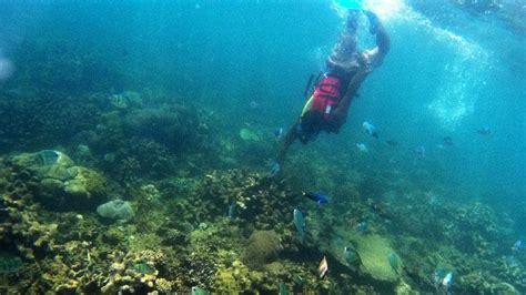 keindahan wisata bawah laut tanjung lesung foto tempoco
