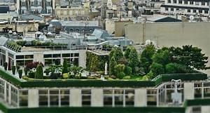 Comment Aménager Une Terrasse Extérieure : am nagement d 39 une toiture v g talis e pour un meilleur ~ Melissatoandfro.com Idées de Décoration