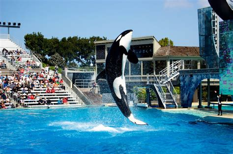 Best Water Parks Visit California Travel Tips