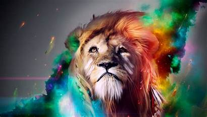 Lion Multicolor Walldevil Wallpapers Awesome Super
