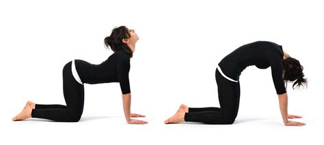 esercizi pavimento pelvico ginnastica pelvica donne esercizi per rafforzare il