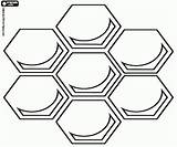 Honeycomb Coloring Pages Bees Template Da Salvato sketch template