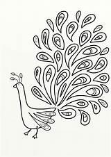 Coloring Peacock Birds Colouring Pdf sketch template
