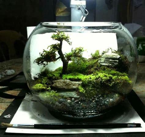 Mini Terrarium Glas by Moss Terrarium Duterte Terrarium Terrarium Diy