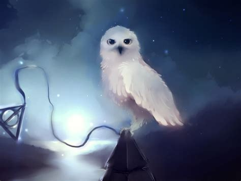 Animated Owl Wallpaper - owl hd wallpapers desktop pictures one hd wallpaper