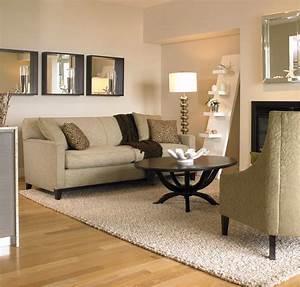Beautiful, Living, Room, Area, Rugs, 20
