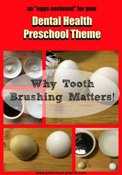 dental health theme for preschool 468 | dental health preschool theme tooth brushing experiment
