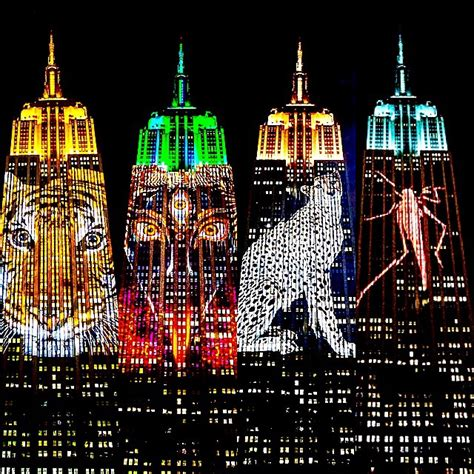 the empire state building light show gallery