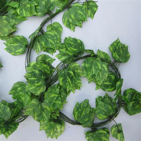 New Delightful Natural Artificial Ivy Leaves Garland. Girl 2014 Rings. Blue Flower Engagement Rings. Amrezy Wedding Rings. Queen's Engagement Rings. 1.8 Carat Engagement Rings. Creative Couple Wedding Rings. Tumblr Aesthetic Wedding Rings. Dainty Yellow Gold Engagement Rings