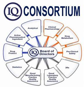 What Is A Consortium  Definition And Meaning