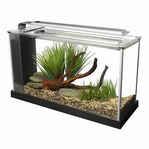 Aquarium Zubehör Günstig : fluval spec nano aquarium g nstig kaufen bei zooroyal ~ Frokenaadalensverden.com Haus und Dekorationen
