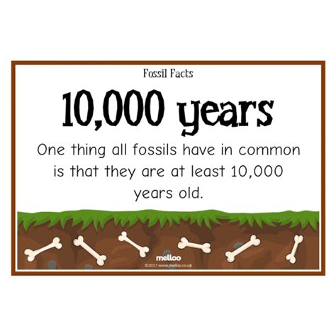 fossil facts science ks