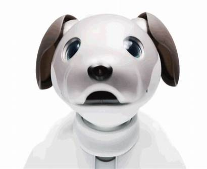 Robot Dog Aibo Newest Toy Sony Face