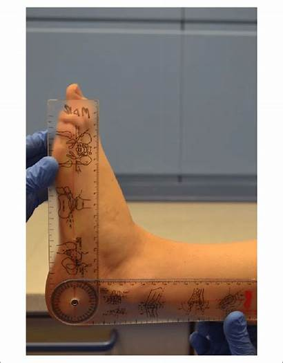 Position Neutral Ankle Patient Joint Supine Examined