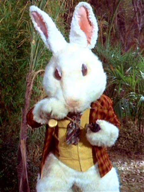 im wunderland kostüm hase wei 223 es kaninchen memory alpha das trek wiki