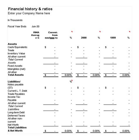 history template financial history and ratios template free