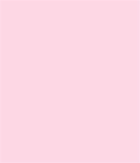 buy asian paints ace exterior emulsion rose window