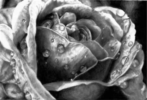 beautiful flower drawings  inspiration hative