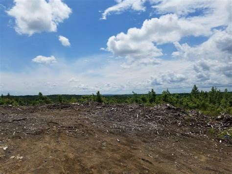Land Clearing - Central Mass Tree