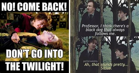 Harry Potter Memes 15 Harry Potter Memes Only True Potterheads Will Understand