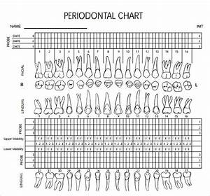 Perio Charting Template